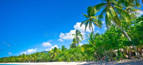 praia-bonita-em-saint-lucia-28311594